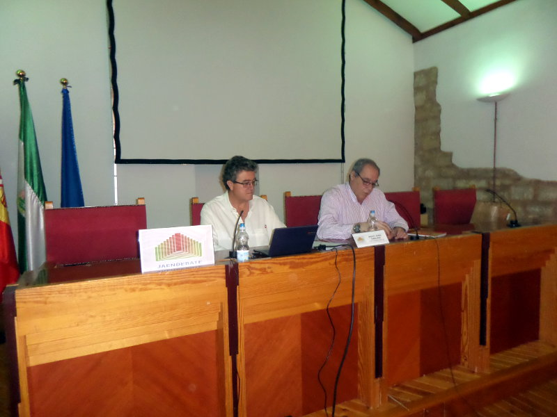 Ferrocarril público y social. Las decisiones políticas y el ferrocarril de Jaén